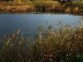 Laghetti di Cala Maricello - Foto: D. Bevacqua